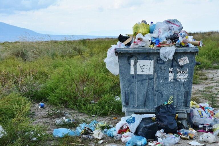 Utilizzare la plastica: come fermare l'inquinamento da plastica